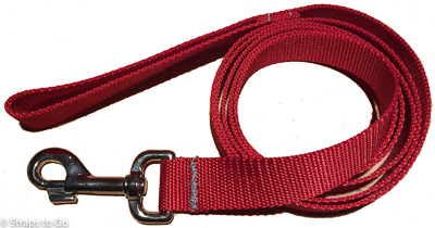 Dog leash with heavy nylon webbing
